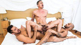 Sexo entre colegas de quarto lindos e pauzudos